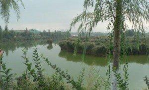 1li nehri